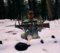 2010 mule deer unit 12a