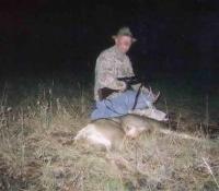 2004 mule deer unit 12a