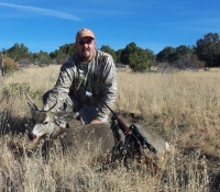 unit 10  mule deer-2012